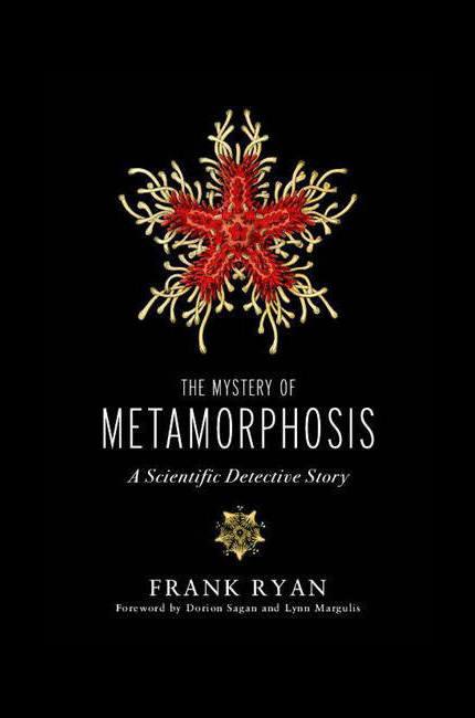 Mystery of Metamorphosis